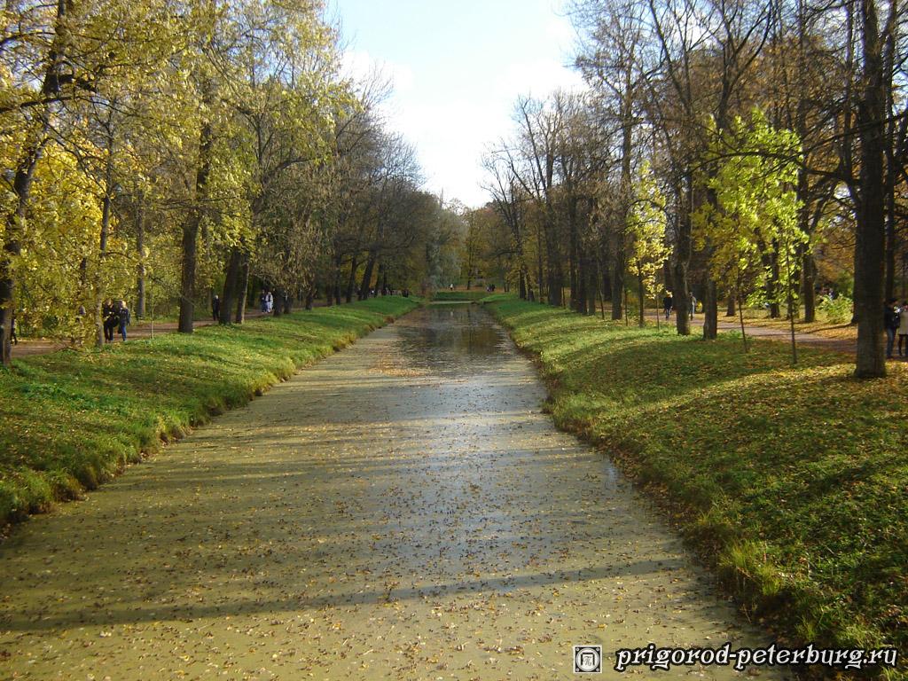 Золотая осень в Пушкине