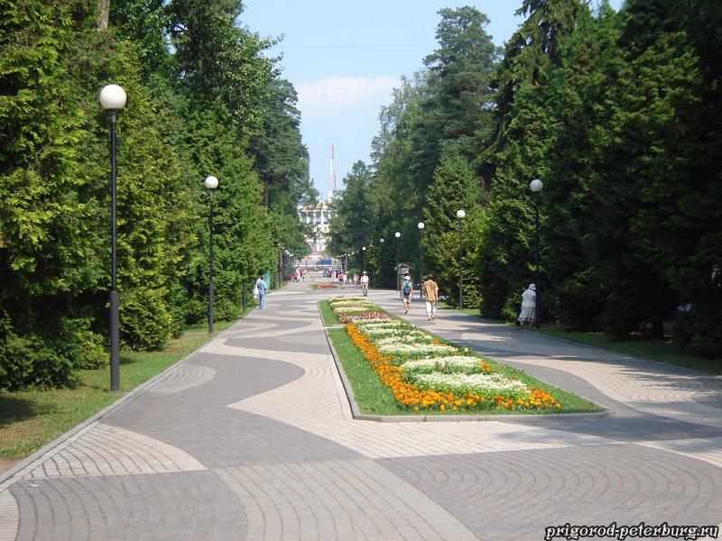 Зеленогорский парк - центральная аллея