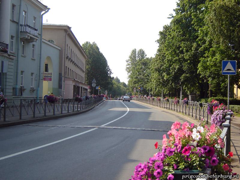 Зеленогорск - проспект Ленина