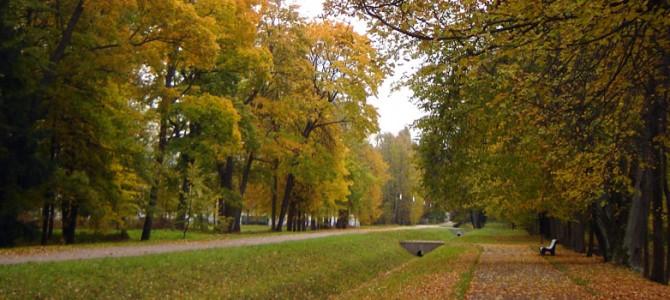 Золотая осень в Ломоносове: отзыв о поездке